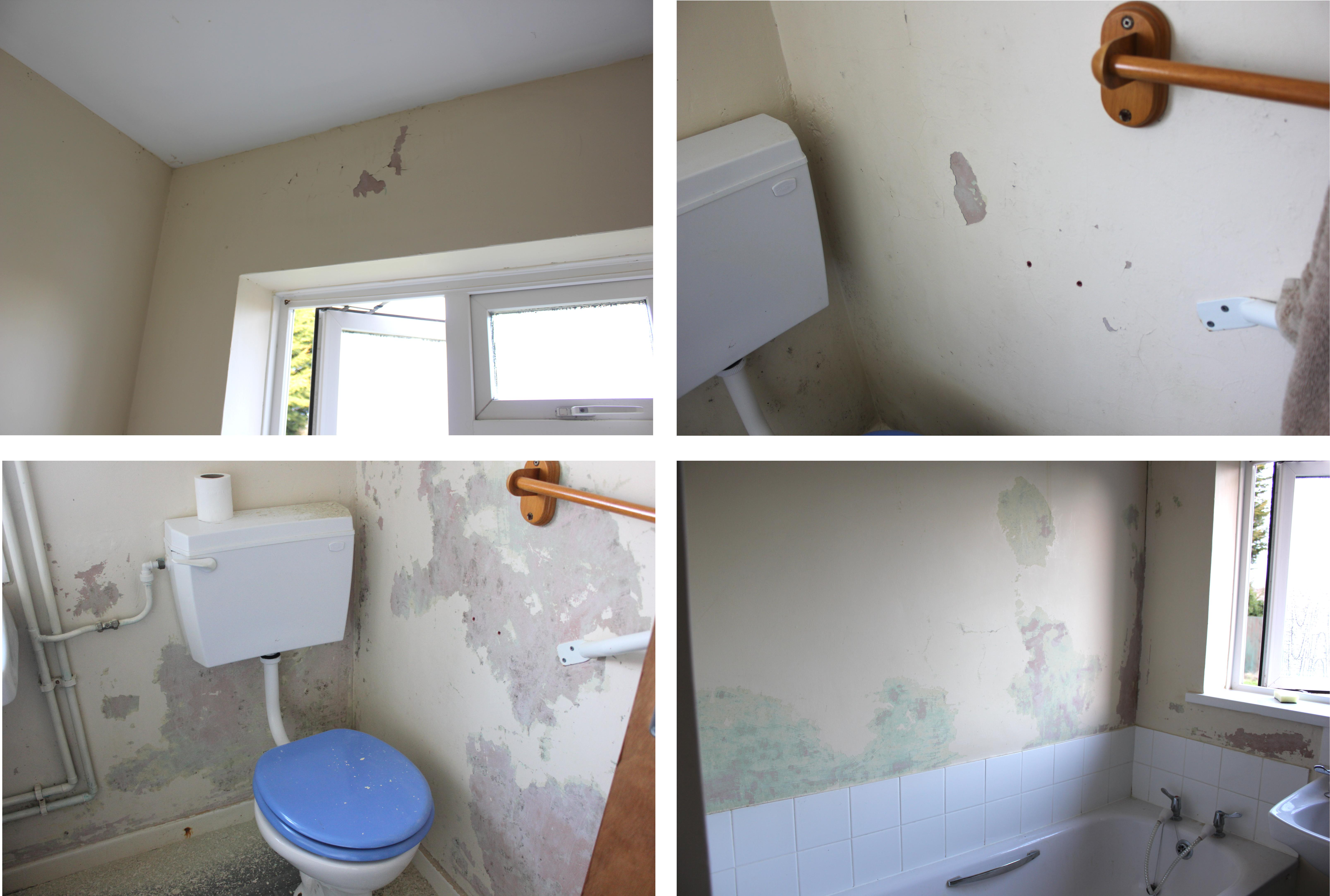Painting Mould In Bathroom 28 Images How To Treat Bathroom Mold Before Painting Ehow Uk Can
