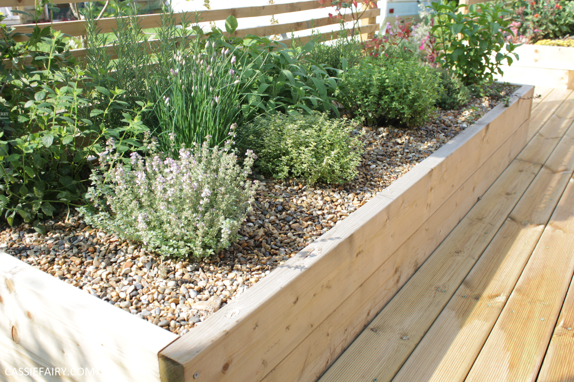 Weed Free Raised Bed To Grow Your Own Herbs, How To Start A Raised Herb Garden