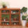 How to upcycle a mid-century cabinet into an indoor plant nursery